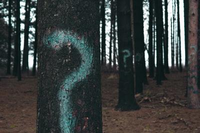 森の中の木に描かれた?マーク