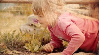 花の匂いを嗅ぐ金髪の少女